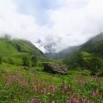 O Vale das Flores no território dos deuses