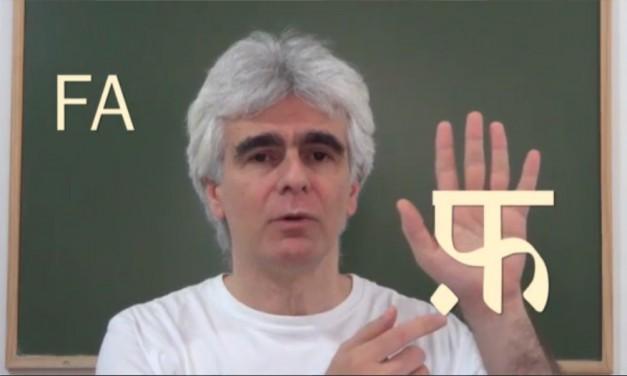 Formação em yoga, agora pode contar com parte do conteúdo a distância